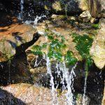Quellen lebendigen Wassers lassen sich überall leicht finden.