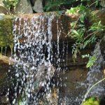 Quellen lebendigen Wassers lassen sich auch in Ibbenbüren leicht finden.