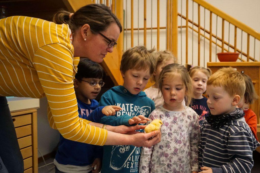 Osterküken im Matthäus-Kindergarten.